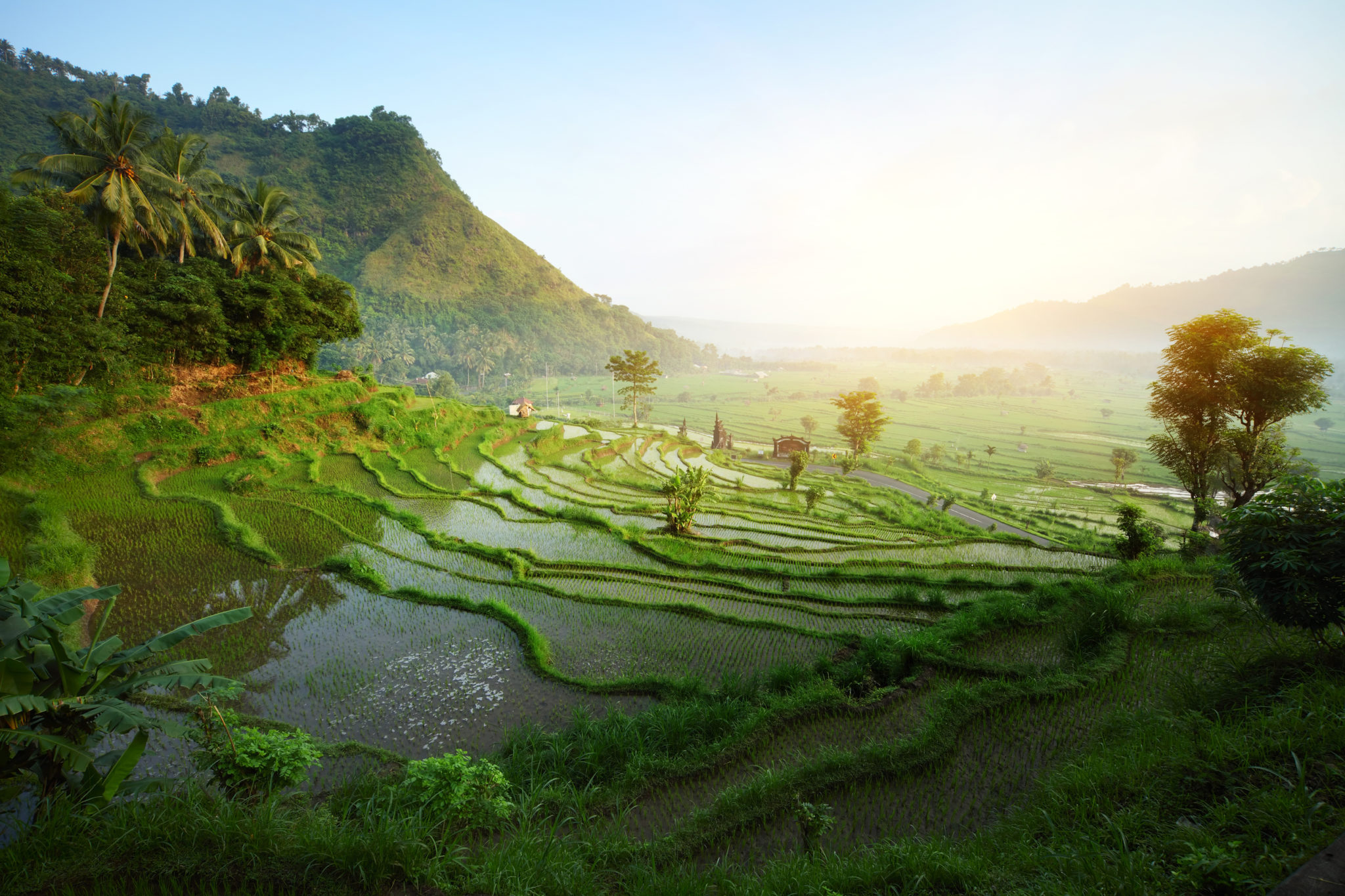 southeast asia travel packages. Discover Real Asia with DLI Travel.