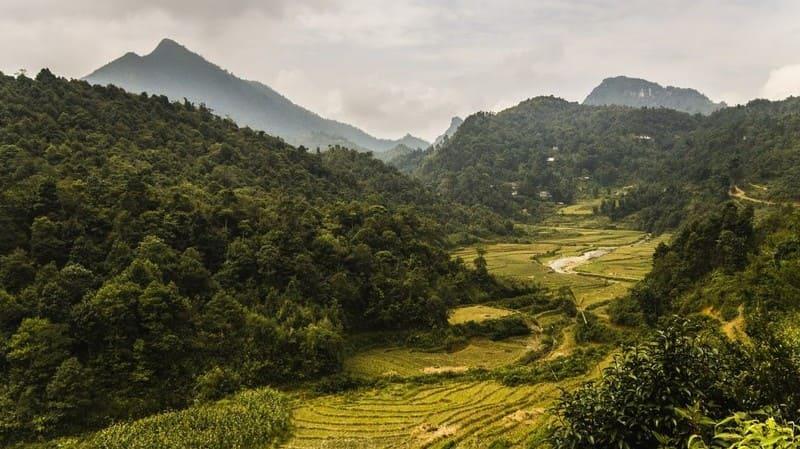 Amazing Vietnam & Cambodia Tour (14)