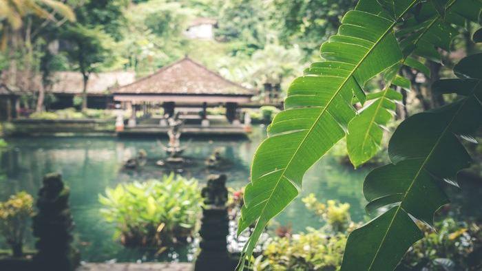 Boost Camp Bali Gallery (6)